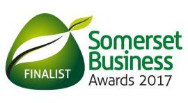 SBA 2017 Finalist logo